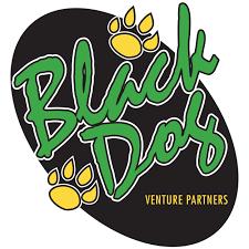 Black Dog Venture Partners logo